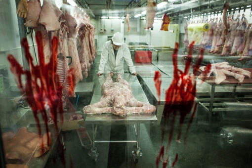 comer-carne-humana